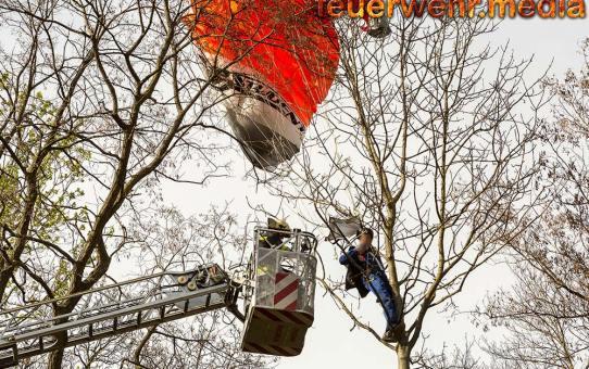 Fallschirmspringer am Flugplatz Krems-Langenlois von Baum gerettet