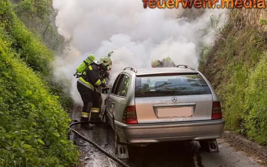 Fahrzeugbrand in den Kremser Weinbergen rasch gelöscht