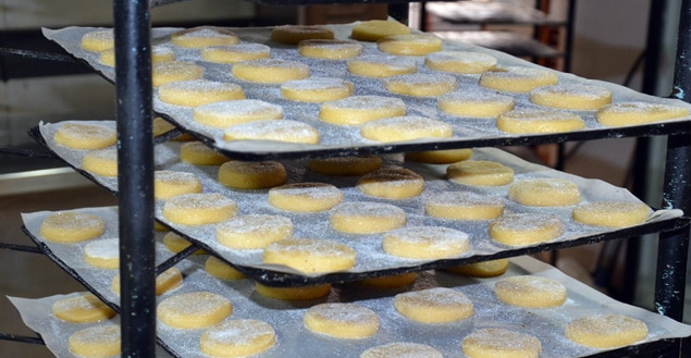 biscuiterie salvatori biscuits prets a cuire-Feuille de choux