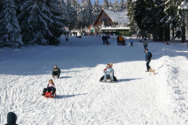 Rodelvergnügen auf der Golfwiese (Tourismus GmbH Oberhof)