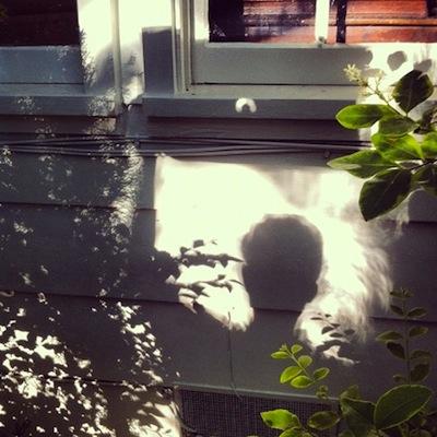 eclipse-solar_2.jpg