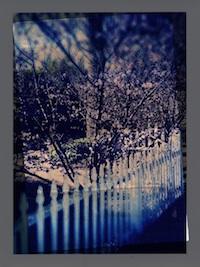 photo5S.jpg
