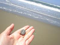 beachcomb3.JPG