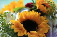 flores_charlene3.jpg