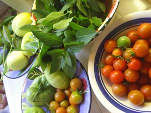 garden2004.jpg