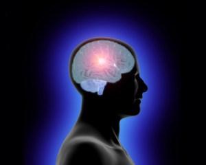 Intellectual Property - Brain