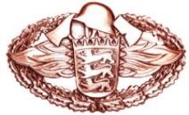 FFA_Leistungsabzeichen