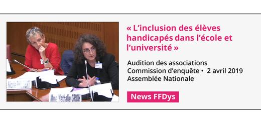 Commission d'enquête Assemblée Nationale : Inclusion des élèves handicapés dans l'école et l'université