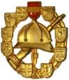 Feuerwehrleistungsabzeichen Gold
