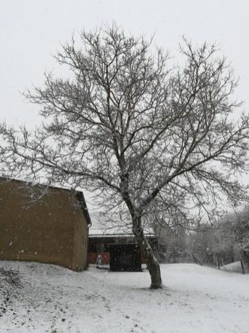 Winterübung 17.2.2018