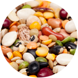 dry edible beans pulses