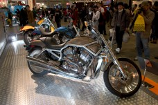 Un lot de 3 Harley V-Rod