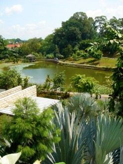 Une vue sur l'étang du parc