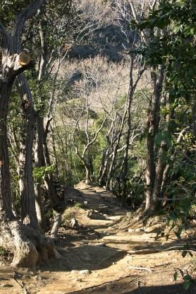 Le chemin que l'on appreinte sur les collines.