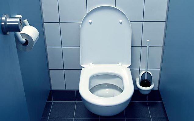 blue toilet