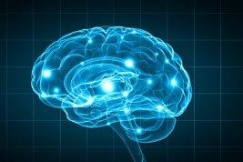 Brain injuries, San Jose brain injury attorneys, brain injury lawyer san jose, bay area