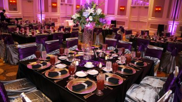 Elegant Entertainment providing LED Uplighting and Elegant DJ Services at the Sugarland Marriott