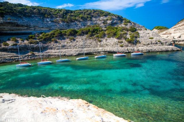 Fazzio Corsica