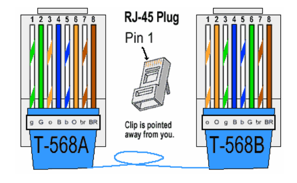 🏆 diagram in pictures database network rj45 plug wiring