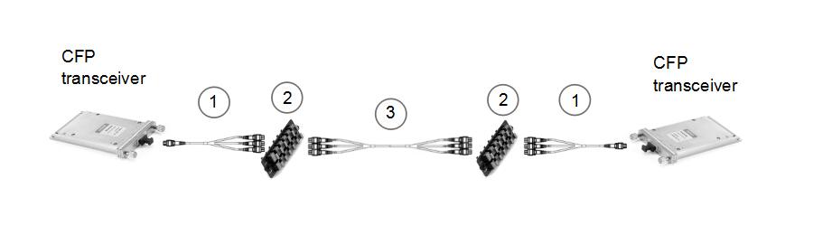 20-fiber to 20-fiber interconnect