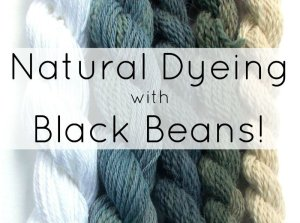 Natural Yarn Dyeing with Black Beans