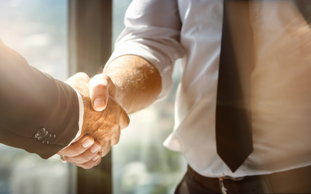 Why You Need a Partner, Not Just a Fiber Product Supplier