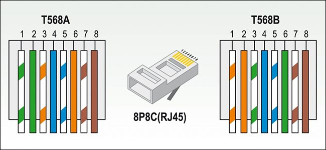 🏆 diagram in pictures database rj45 connector cat5e