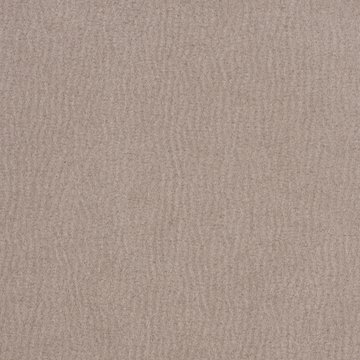 Faux Suede Border Oyster
