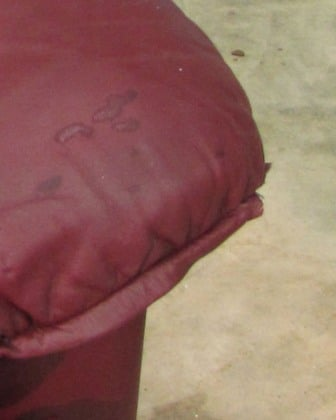 Leather sofa damaged by oil