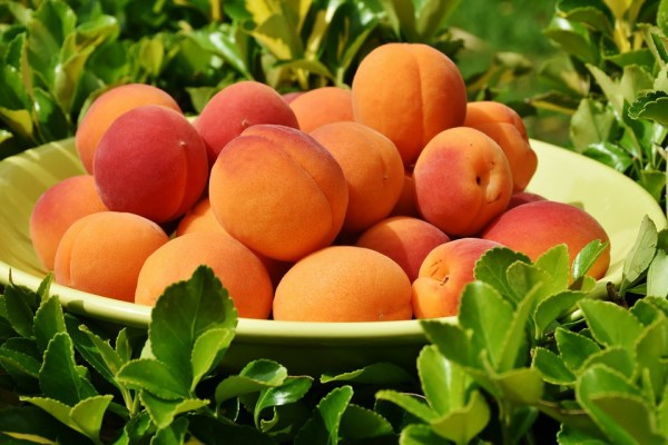 """Bowl of Peaches"" by Kevin Richard White"