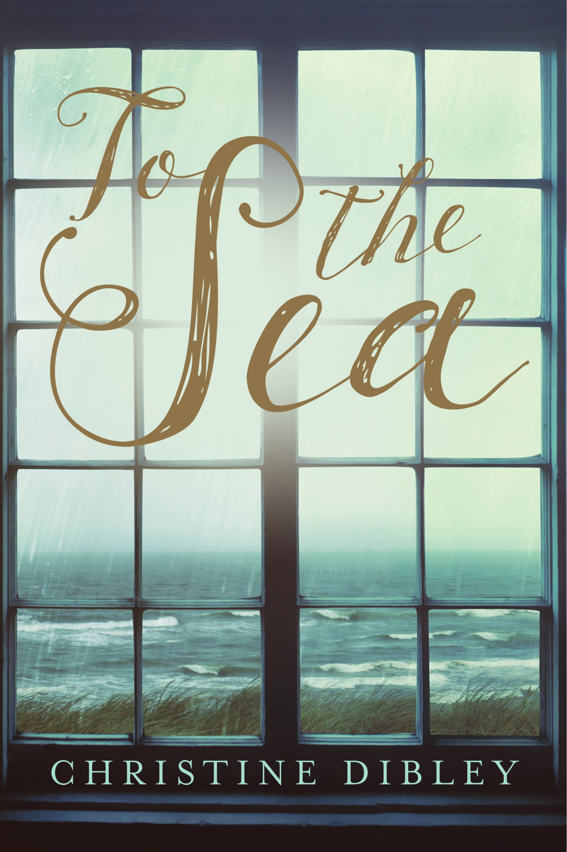 (Review): To the Sea by Christine Dibley
