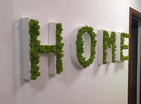 decoratiune pentru perete din licheni si litere din mdf vopsit cu vopsea pe baza de apa