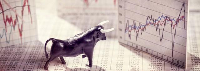 Image result for bull market
