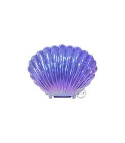 Concha marina Lila