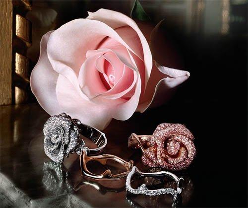 rosadior
