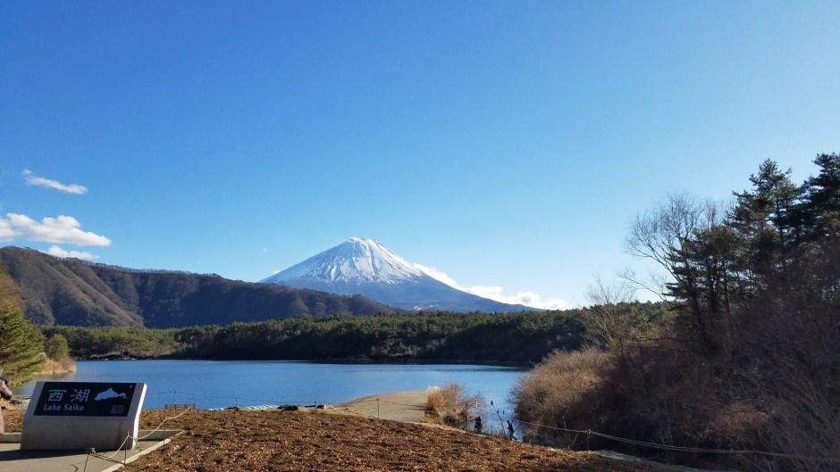 西湖/Lake Saiko