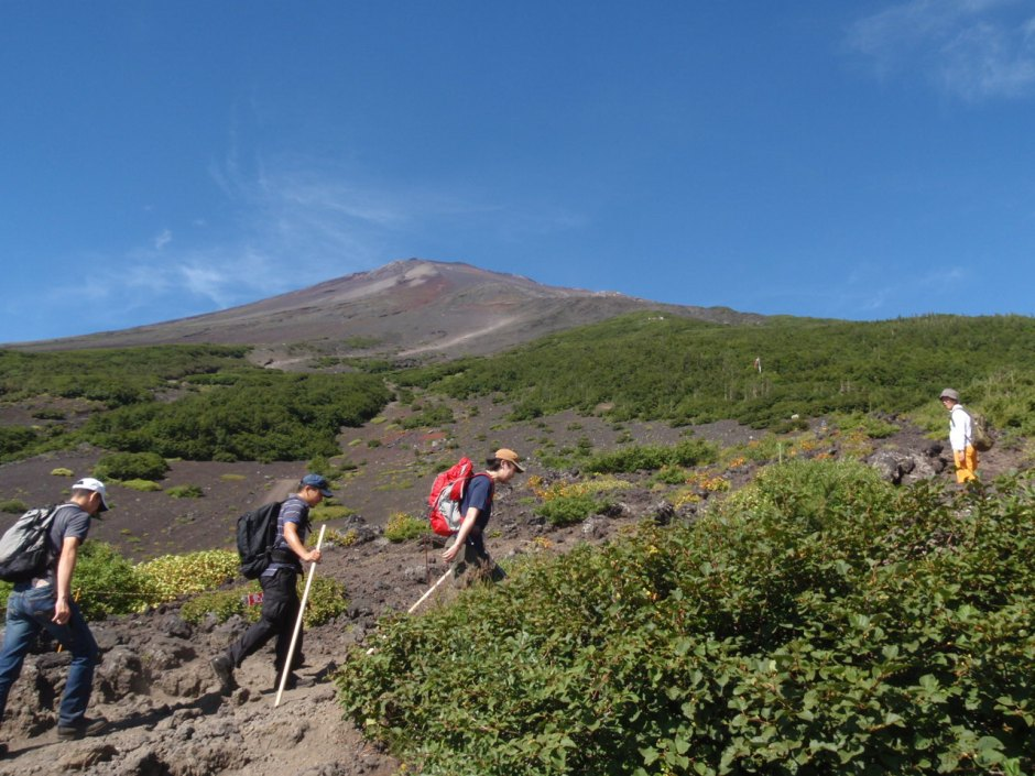 """【Asset No.1-4 Of Mt.Fuji】""""Subashiri Trail"""": Have A Calm Hiking On The Second Shortest Trail Of The Four"""