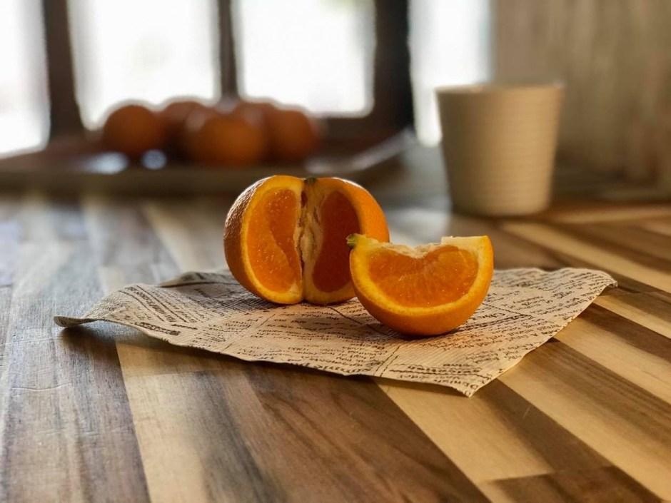 A Kingdom of Citrus!  柑橘王国しずおか
