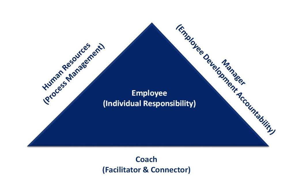 Organizational Alignment Triangle