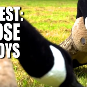 On Test: Goose Decoys