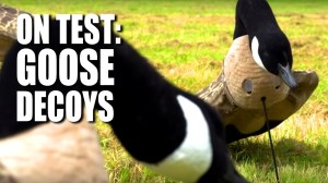 On Test: Goose Decoys