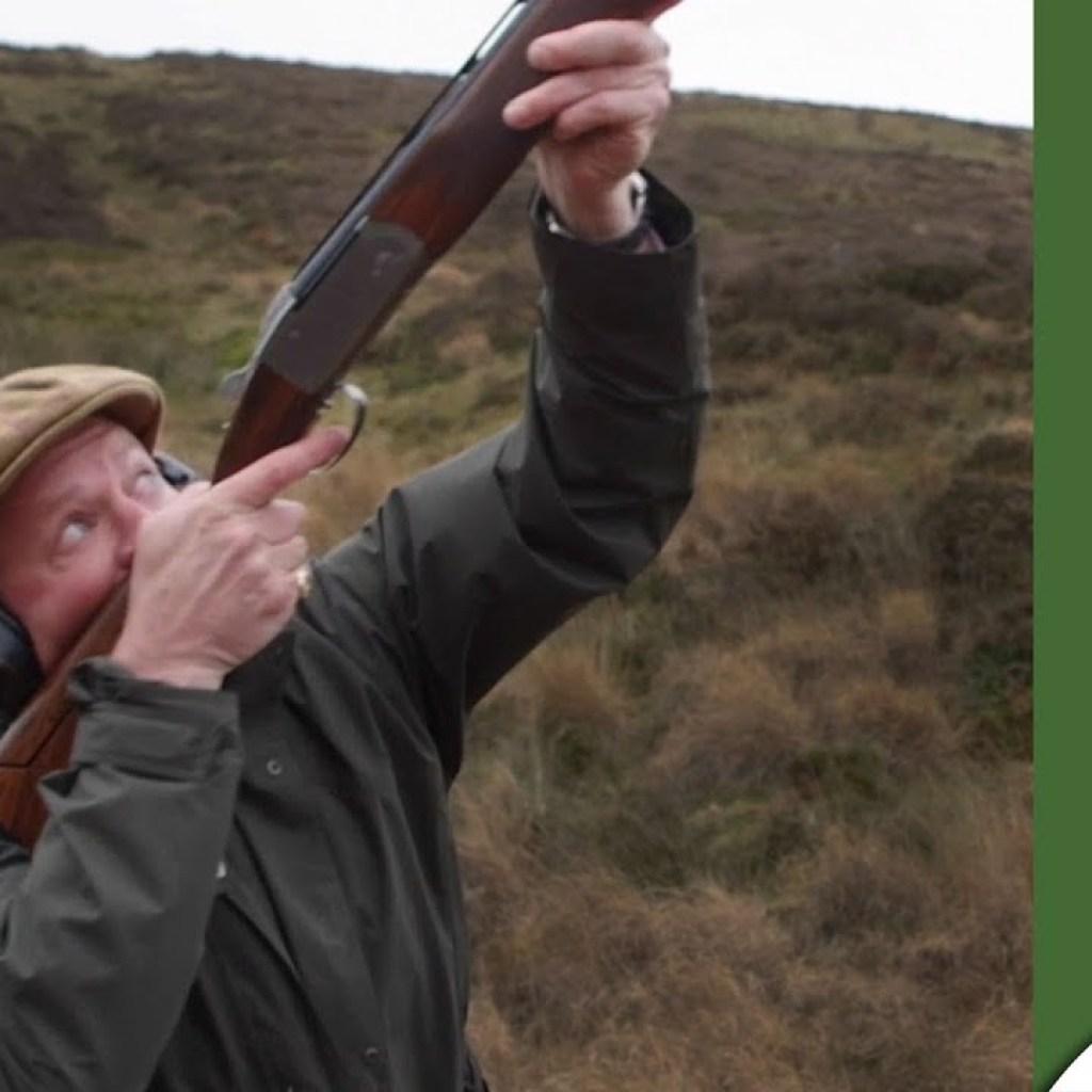 High Pheasants: Sweet Lamb Shoot
