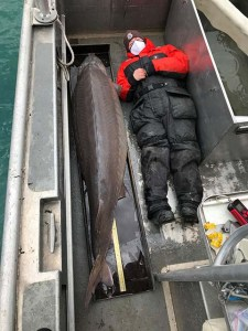 US wildlife worker catches 100-year-old fish