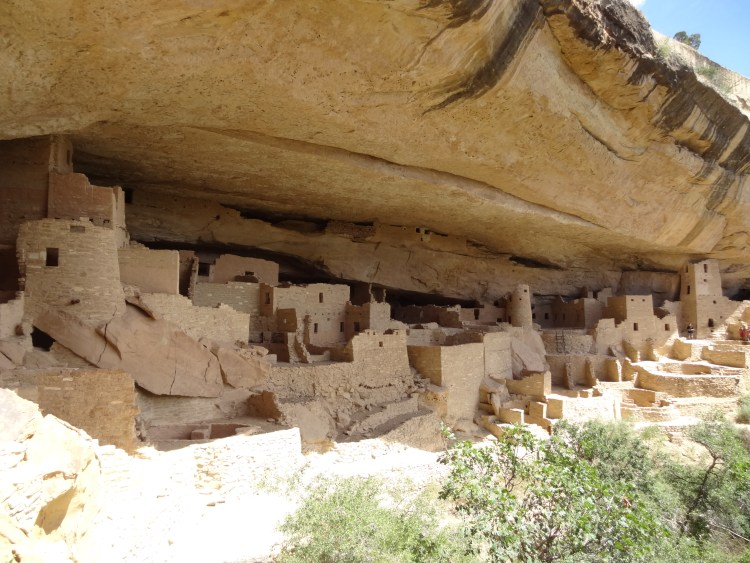 A view of Cliff Palace built by the Ancestral Puebloans