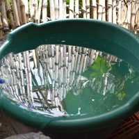 Providing clean drinking water to the people of Lake Atitlan