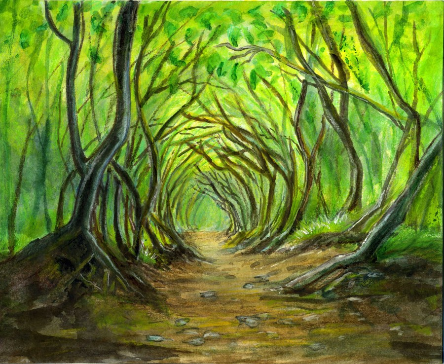 Watercolor Fantasy Forest