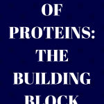 Functions of Proteins: The Building Block