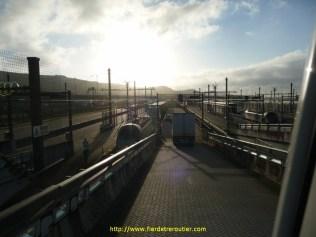 Au petit matin je quitte l'Angleterre via le tunnel sous la Manche, après avoir tenté la conversation avec la mouette-à-une-patte pour tuer le temps en attendant le train…