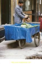 Petit primeur légumes