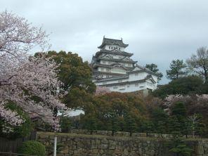Chateau d'IMEJI entouré de centaines de cerisiers